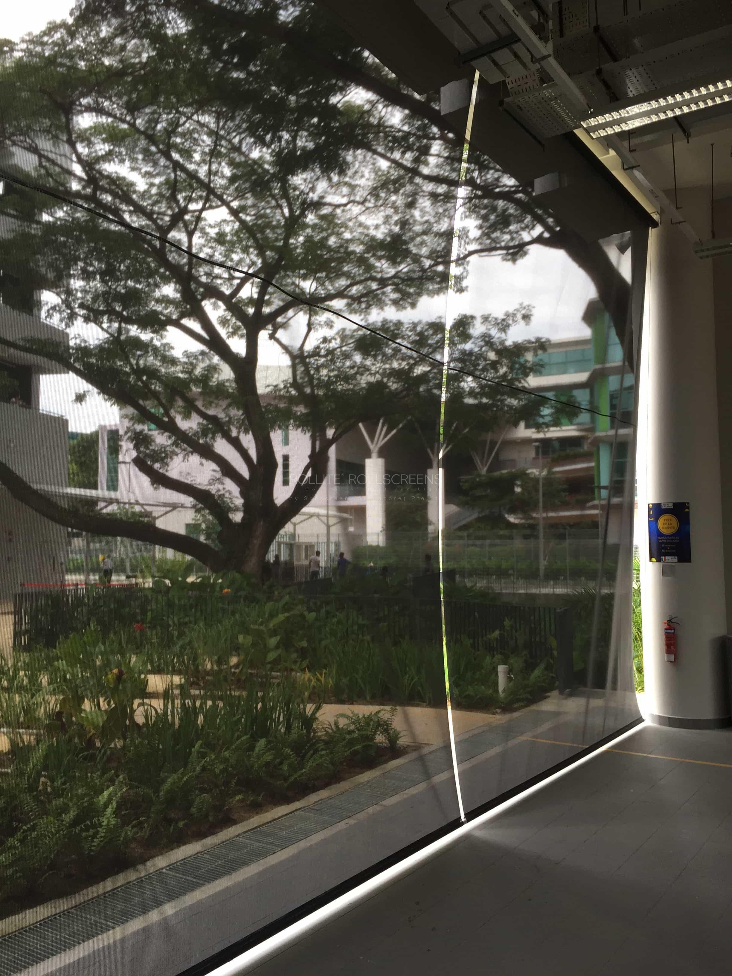Sunscreen Singapore_Rollite External 13